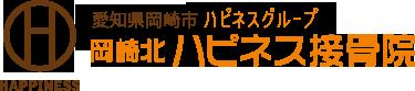 愛知県岡崎市 ハピネスグループ 岡崎北ハピネス接骨院
